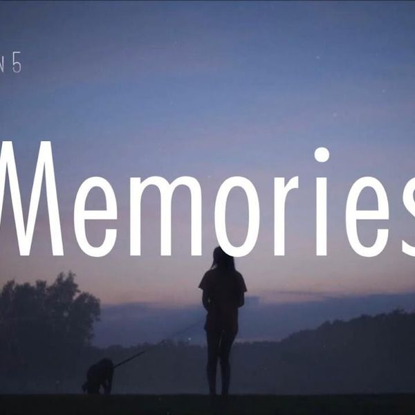 Memories Essay Examples