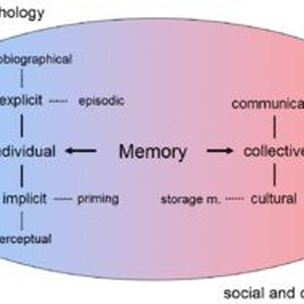 Memory Essay Examples