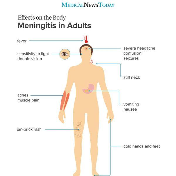 Meningitis Essay Examples