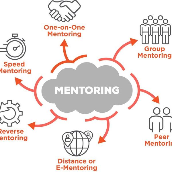 Mentoring Essay Examples