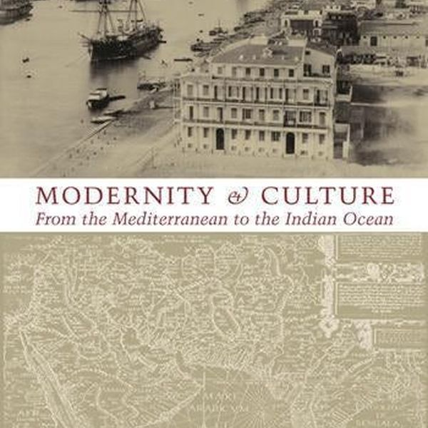Modernity And Culture Essay Examples