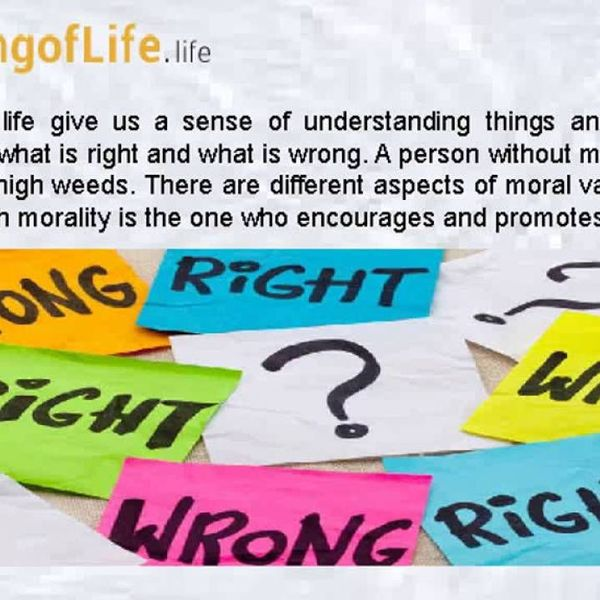 Moral Values In Life Essay Examples
