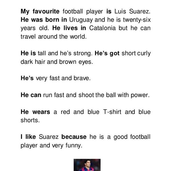 My Favourite Football Player Essay Examples