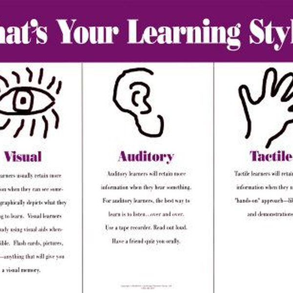 My Learning Style Essay Examples
