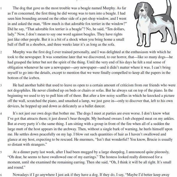 My Pet Animal Dog Essay Examples
