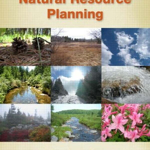 Natural Resource Essay Examples