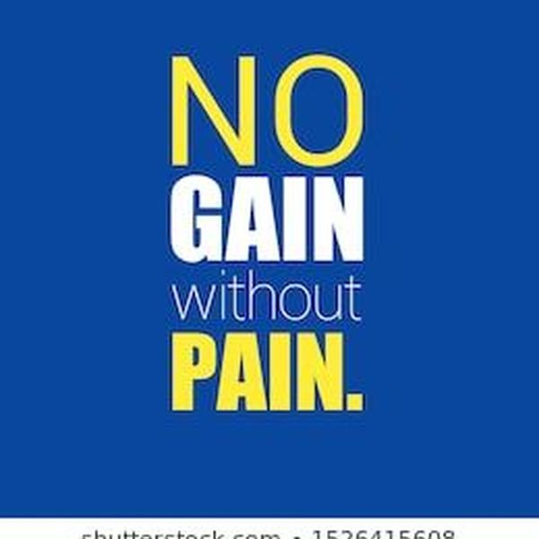 No Gain Without Pain Essay Examples