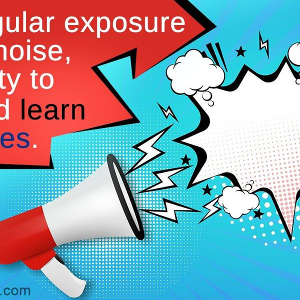 Noise Pollution And Its Effects Essay Examples