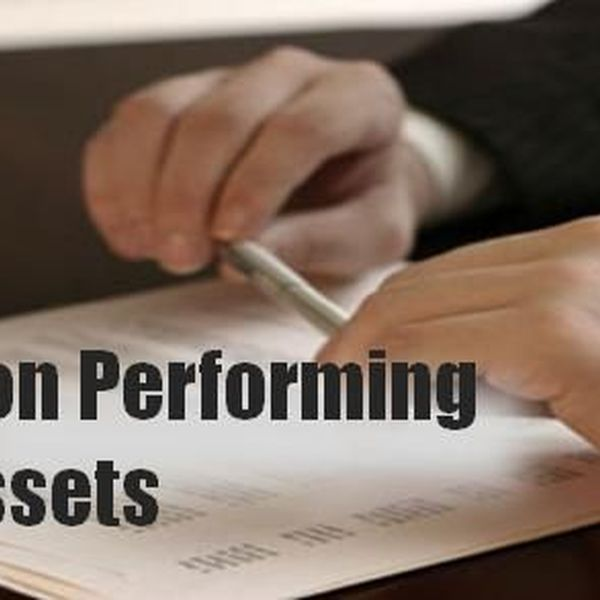 Non Performing Assets Essay Examples