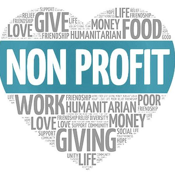 Non Profit Organizations Essay Examples