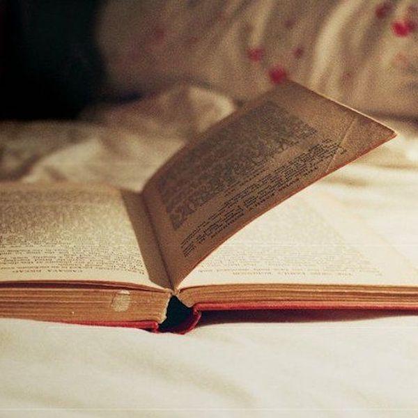 Novel Reading Essay Examples