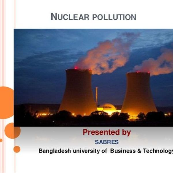 Nuclear Pollution Essay Examples