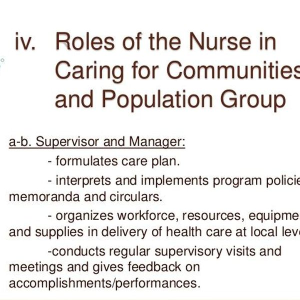 Nurses Roles Essay Examples
