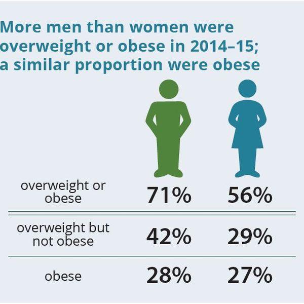 Obesity In Australia Essay Examples