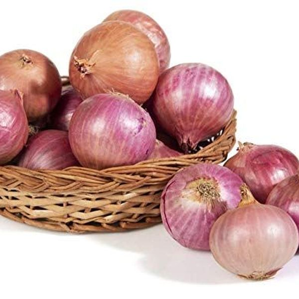 Onion Essay Examples