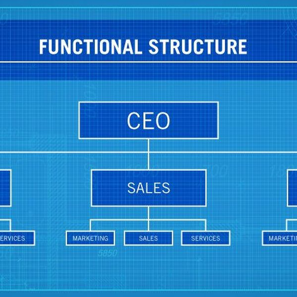 Organizational Structure Essay Examples