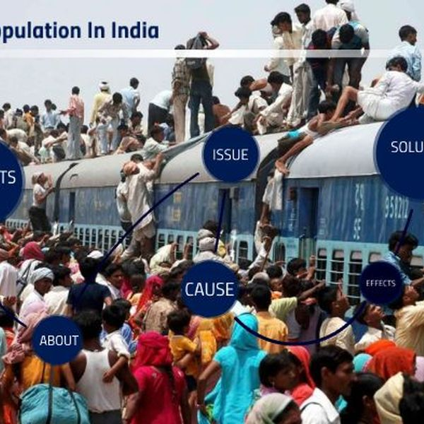 Over Population In India Essay Examples
