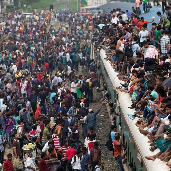Overpopulation Essay Examples
