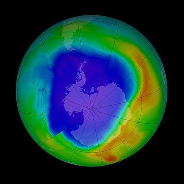 Ozone Layer Essay Examples