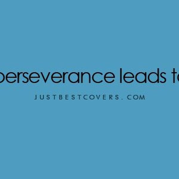 Perseverance Leads To Success Essay Examples