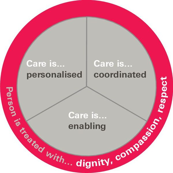 Person Centred Care Essay Examples