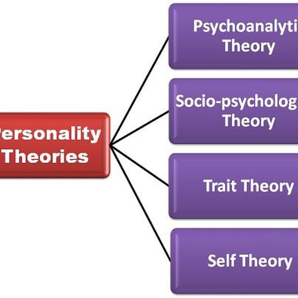 Personality Theories Essay Examples