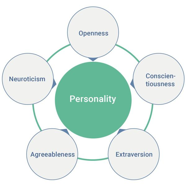 Personality Traits Essay Examples