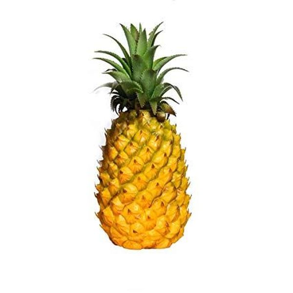 Pineapple Fruit Essay Examples