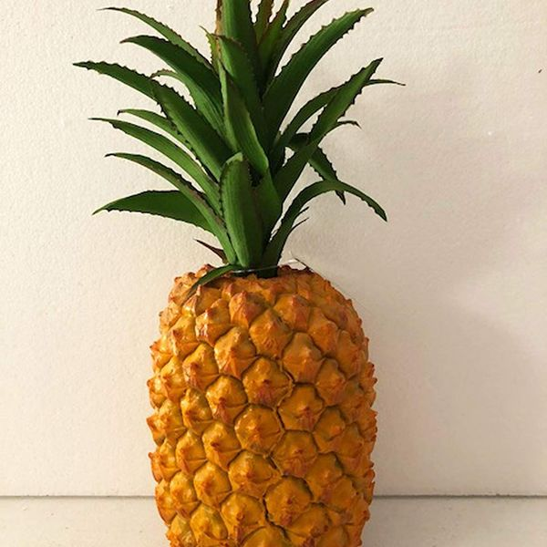 Pineapple Essay Examples