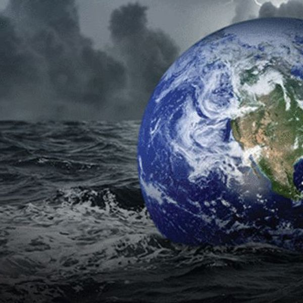 Planet In Crisis Essay Examples