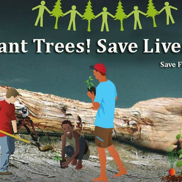Plant Trees Save Life Essay Examples