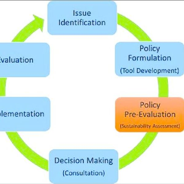Policy Making Process Essay Examples
