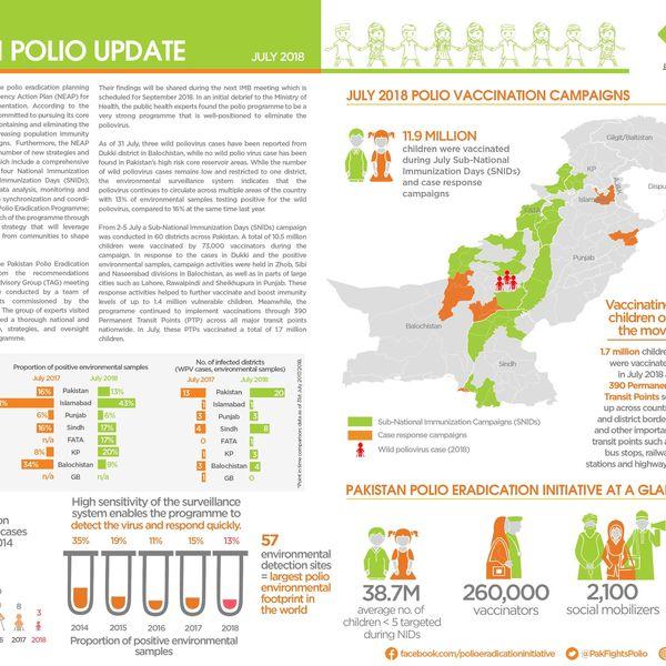 Polio In Pakistan Essay Examples