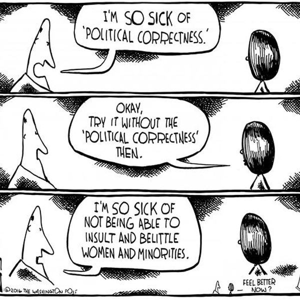 Political Correctness Essay Examples