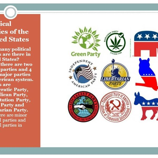 Political Parties Of Usa Essay Examples