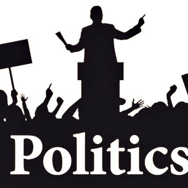 Politics Essay Examples