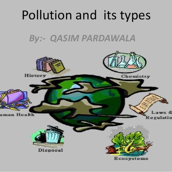 Pollution And Its Types Essay Examples