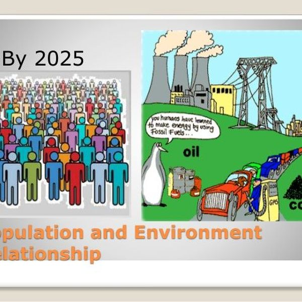 Population And Environment Essay Examples