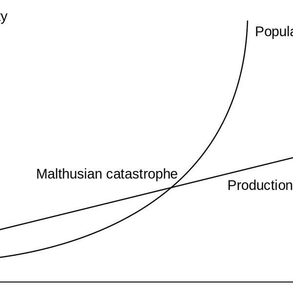 Population Malthus Essay Examples