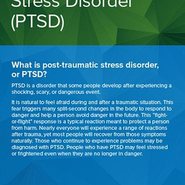 Post Traumatic Stress Disorder Essay Examples