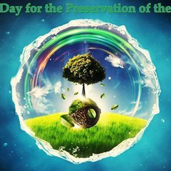 Preservation Of Ozone Layer Essay Examples