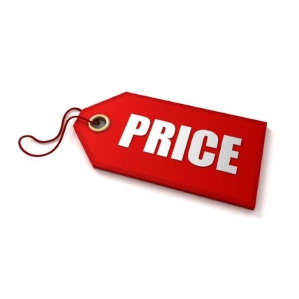 Price Essay Examples