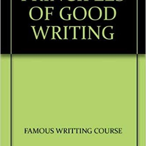 Principles Of Good Writing Essay Examples