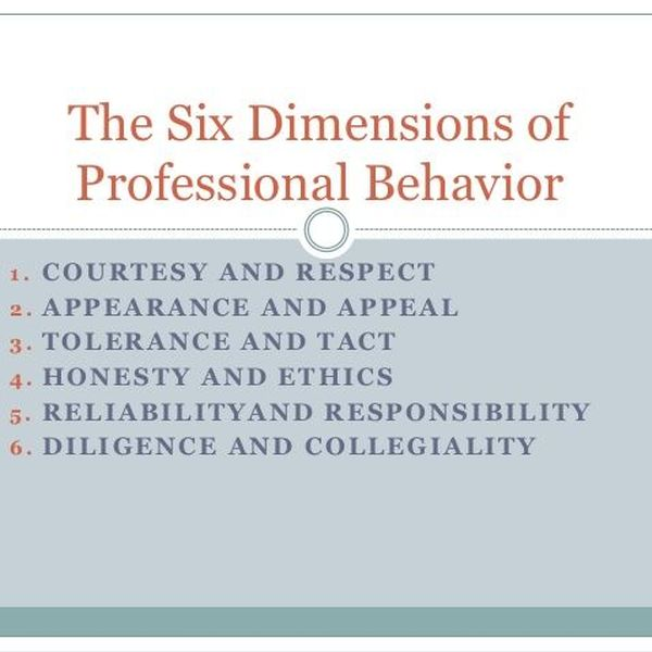 Professional Behavior Essay Examples