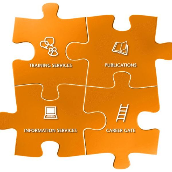 Professional Development In Nursing Essay Examples