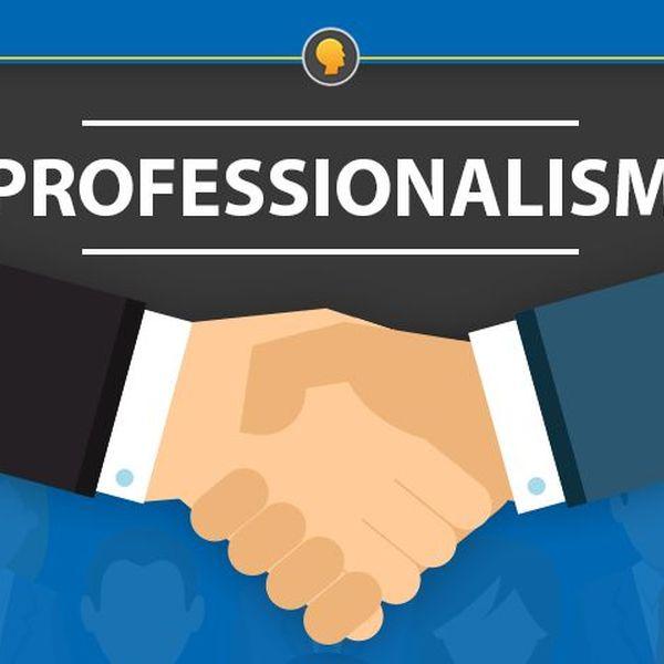Professionalism Essay Examples