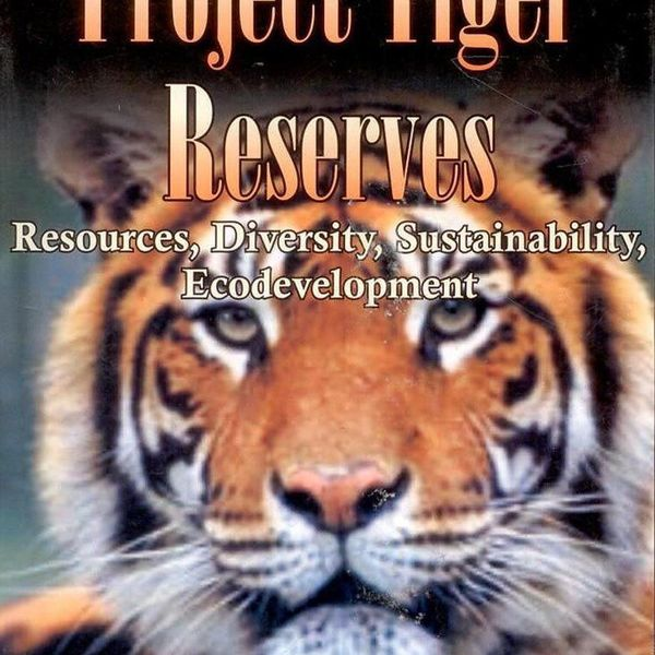 Project Tiger Essay Examples