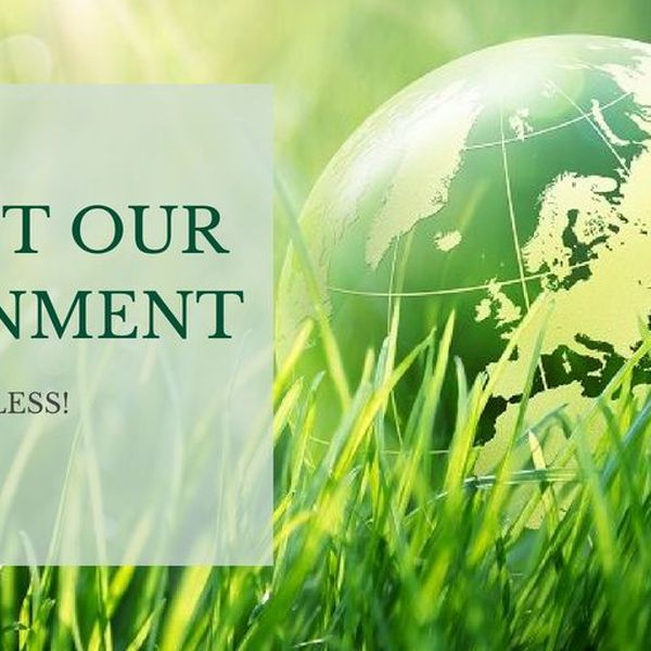 Protect Our Environment Essay Examples