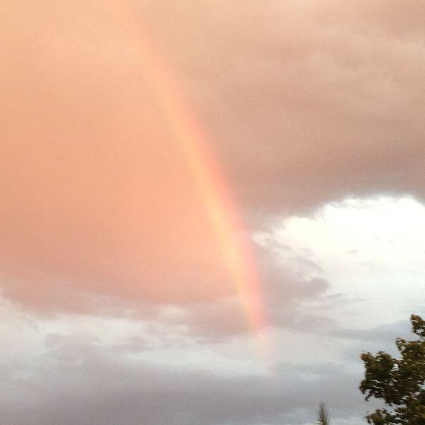 Rainbow A Natural Beauty Essay Examples