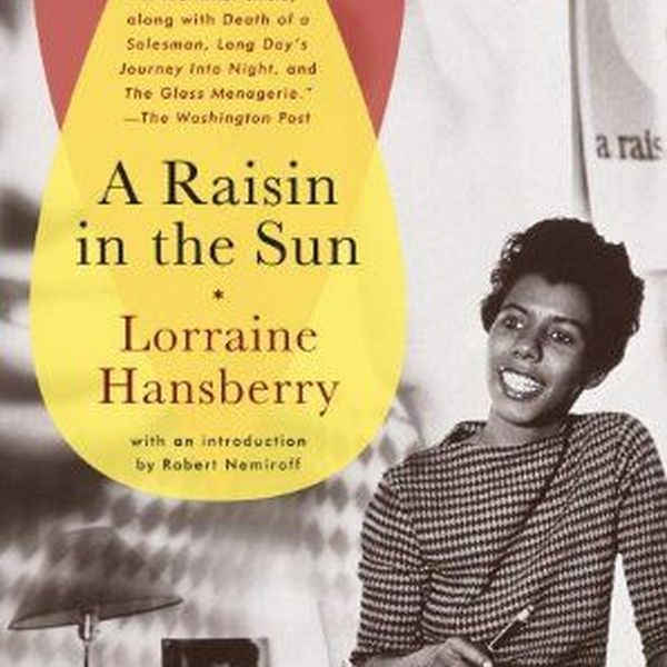 Raisin In The Sun Essay Examples